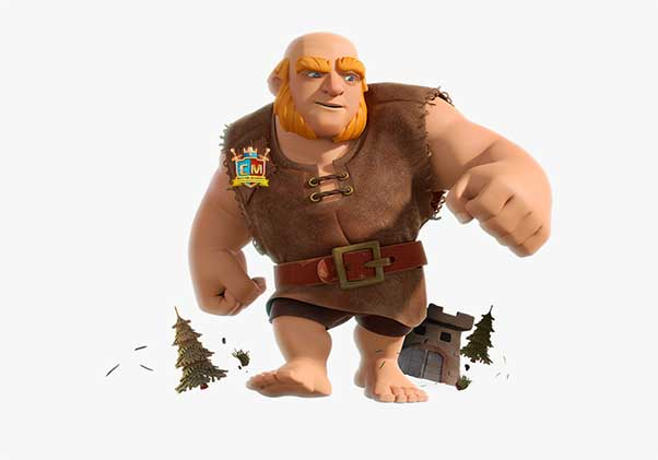 clash of clans characters levels